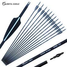 Lot de 6/12/24/30 flèches en carbone 28/30/31 pouces, colonne vertébrale 500 avec flèches remplaçables pour la chasse au tir à l'arc arc composé/recourbé