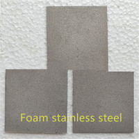 316L stainless steel powder sintered filter material/Porous foam stainless steel/Micron pore size