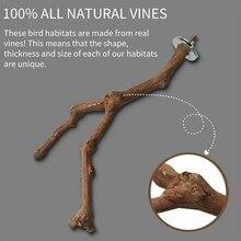 Натуральные перцы для птиц, дикая Виноградная древесина, персики для птиц, клетки для шлифовки птиц, лазание, стоячая клетка, аксессуары для ...