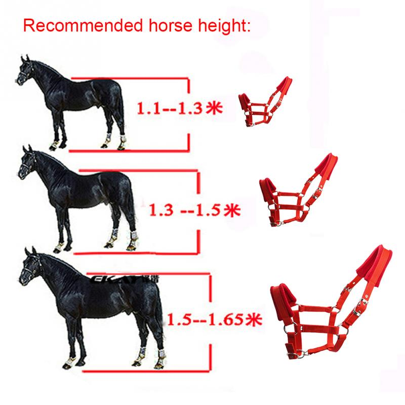 Double Layered Horse Halter Riding Equipment Protective Adjustable Strap Outdoor Fleece Padded Practical Multiple Sizes Thicken
