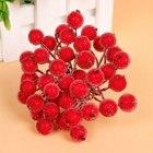 Red Gold Foam Berry ...