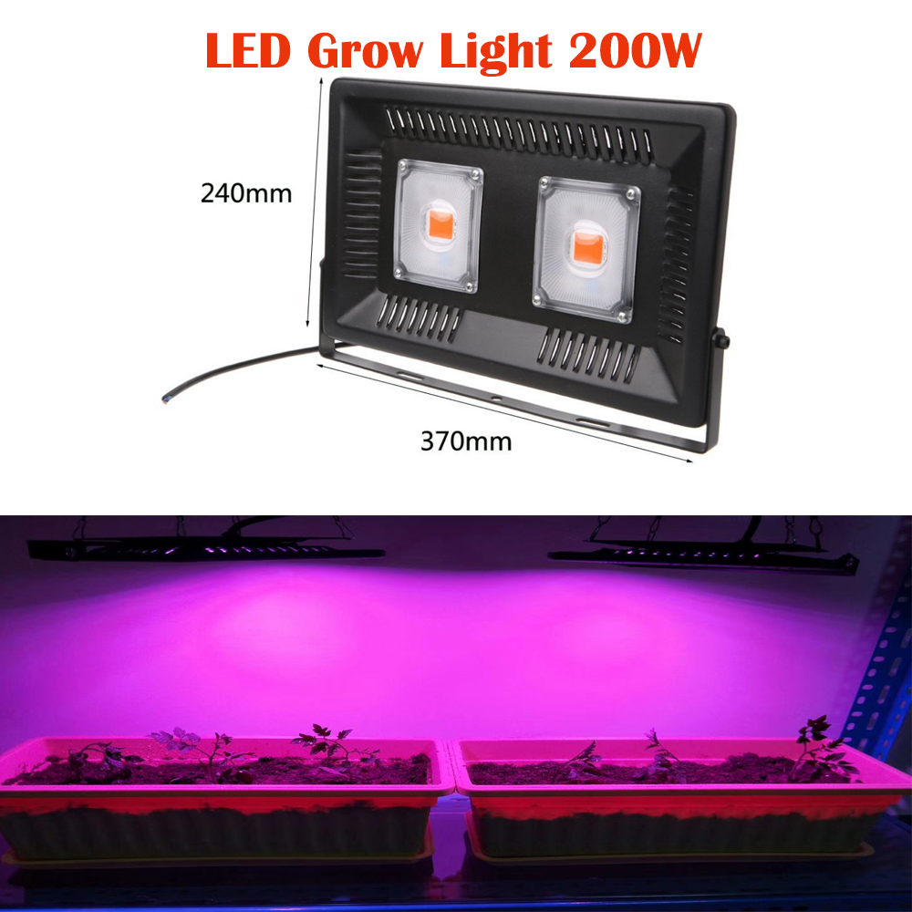 LED Grown Flood Light Ip65 30w 50w 100w Full Spectrum Led Grow Lamp Outdoor Waterproof Light for Greenhouse Seeds Pants