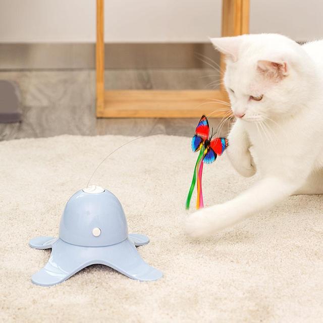 Fluorescent Butterfly Kitten Toys Non Stop Fun!  11