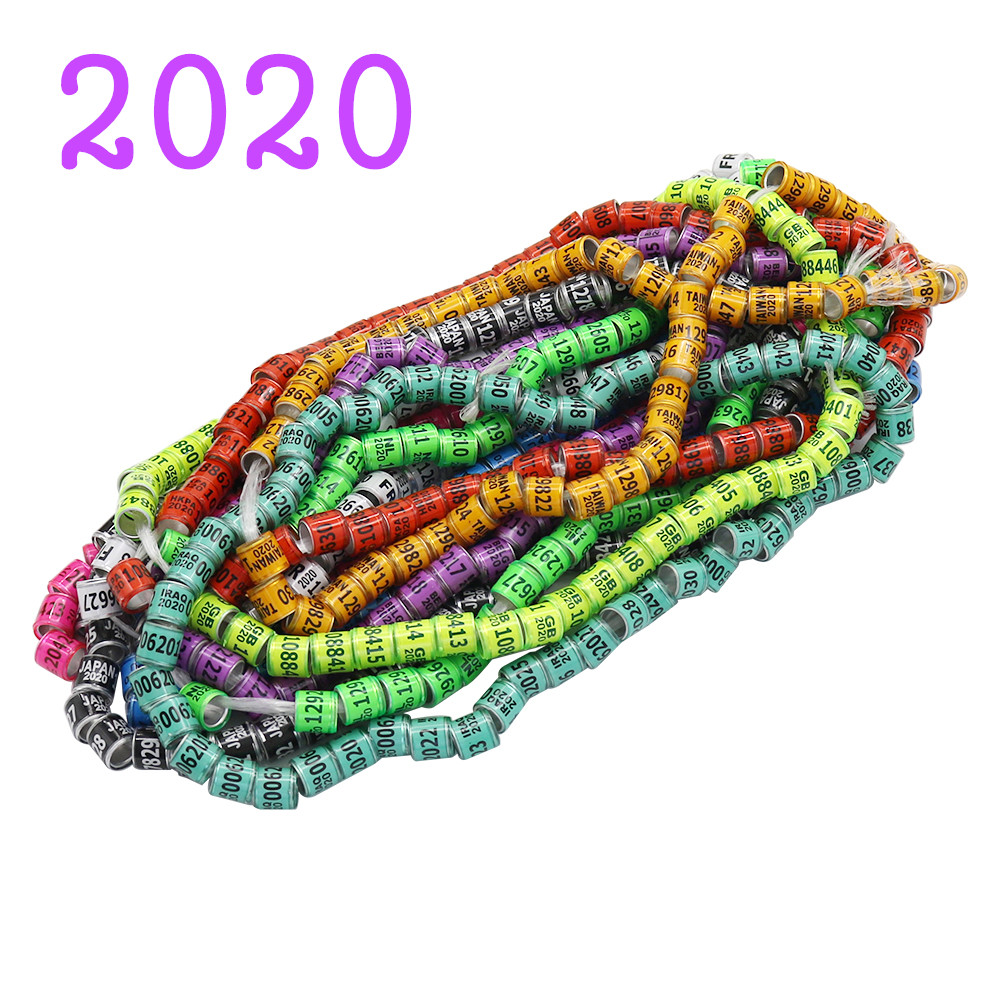 50 Pcs 2020 Multicolor Pigeon Foot Ring With Word Earrings Quality Durable Bird Ring Racing Pigeon Foot Ring Bird Tools