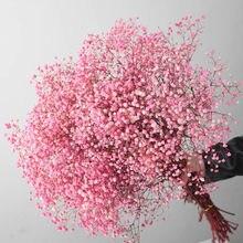 Natural fresco flores preservadas secas gypsophila paniculata, buquês de flores da respiração do bebê presente para a decoração do casamento, namorados