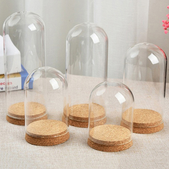 Tabletop Display Glass Dome Cloche Cover Decor Dry Flower Ornaments Acrylic Dust Cover Display Box Immortal Flower Box