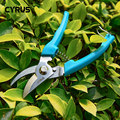 Classic Shears Pruner Cutter Secateurs Pruning Scissors Bypass Sharpener Clippers Garden Tool Solid Snip Floral