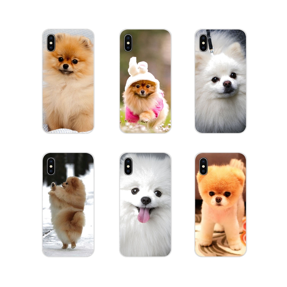 For <font><b>Samsung</b></font> Galaxy S3 S4 S5 <font><b>Mini</b></font> S6 S7 Edge S8 S9 S10 Lite Plus Note <font><b>4</b></font> 5 8 9 Pomeranian dogs dog cute Silicone Phone <font><b>Cases</b></font> Cover image