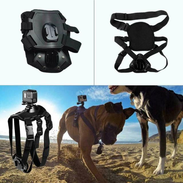 Harnais pour chiens et animaux   Réglable en vogue, support de ceinture au dos et à la poitrine pour caméras GoPro Hero 2019