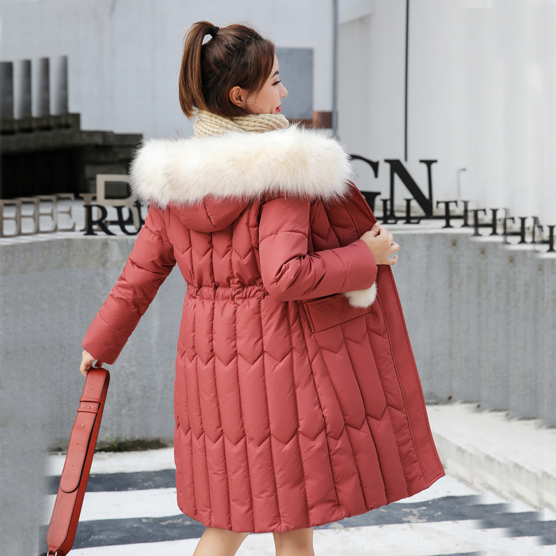 winter jacket women coats 2019   Parkas   for women 9 Colors Jackets warm Outwear With a Hood Large Fur Collar XXXXL 901