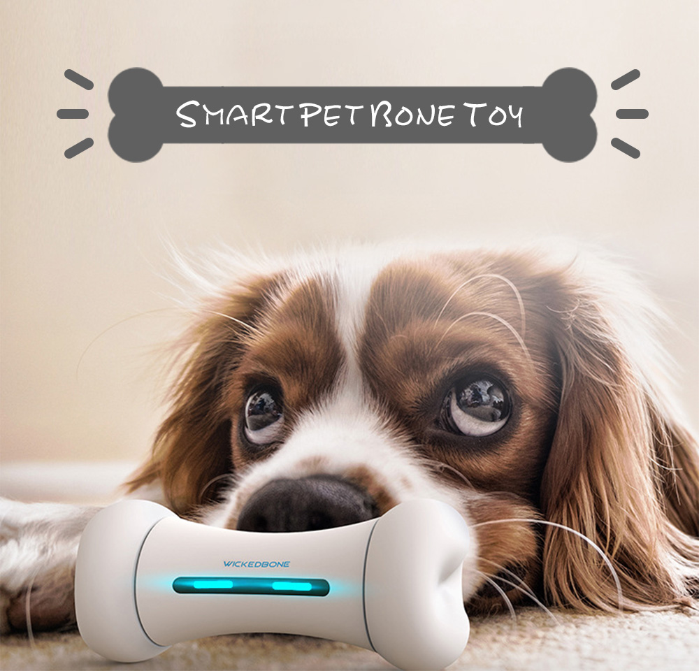 APP Control Smart Pet Toys in Bone Design with Two Wheels Powered by Lithium Battery 3
