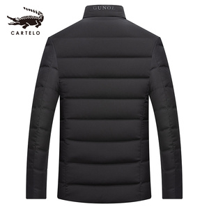Image 2 - Mens White Duck Down Jacket Winter Slim Hooded Down Coat Selected Feather Clothing  for Men 9231 New 2019