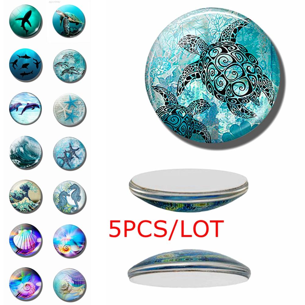5PCS/SET Sea Turtle Dolphin Seashells Photo 12/16/20/25/30mm Glass Cabochon Jewelry DIY Pendant Jewelry Findings Accessories