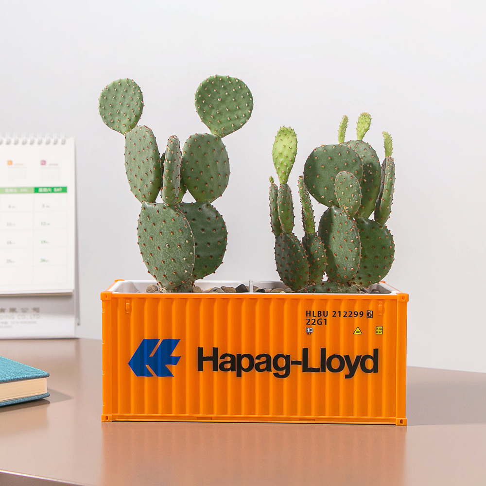 recipiente modelo caixa criativo suculentas planta pote 04