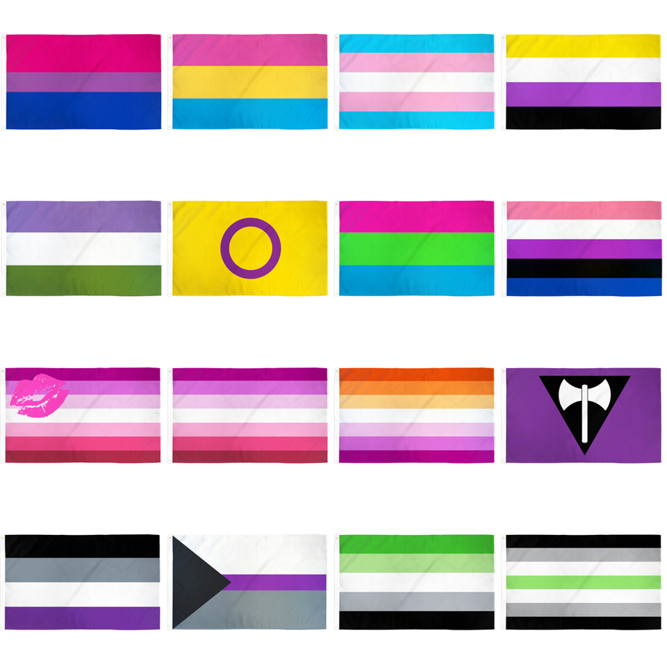 5ft x 3ft Asexual Lgbt Flag 5 3 Gay Pride Rainbow Themed Flags 2 Metal