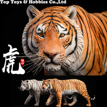 цена на 41cm  JXK012 1/6th Yellow/white  Bengal Tiger Animal Statue Model Toy Gift Model Collection Resin Anime Figure for Fans Gift