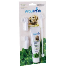 Pet Hygiene Teeth Care Toothbrush Toothpaste Dog Cat Brushes  Tooth Cleaning Health Supplies