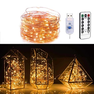 Copper Wire LED String Light R