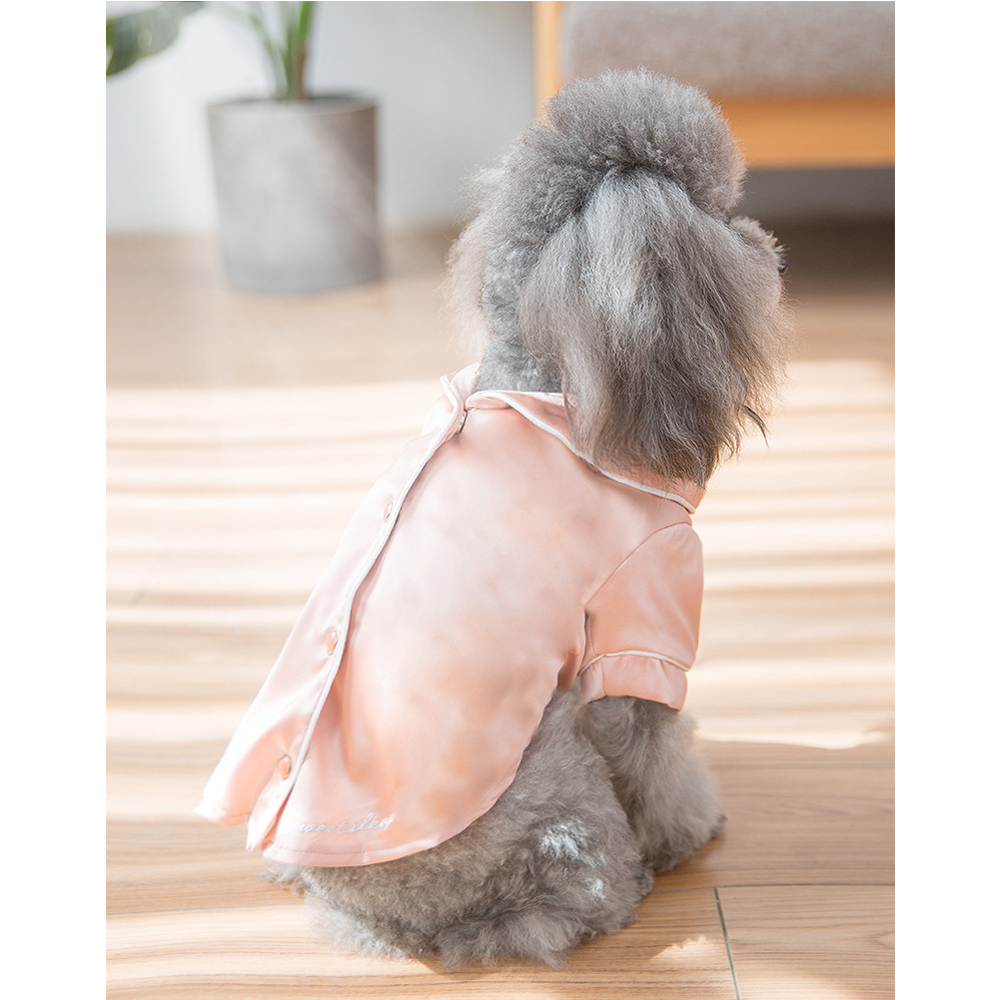 dog clothes (5)