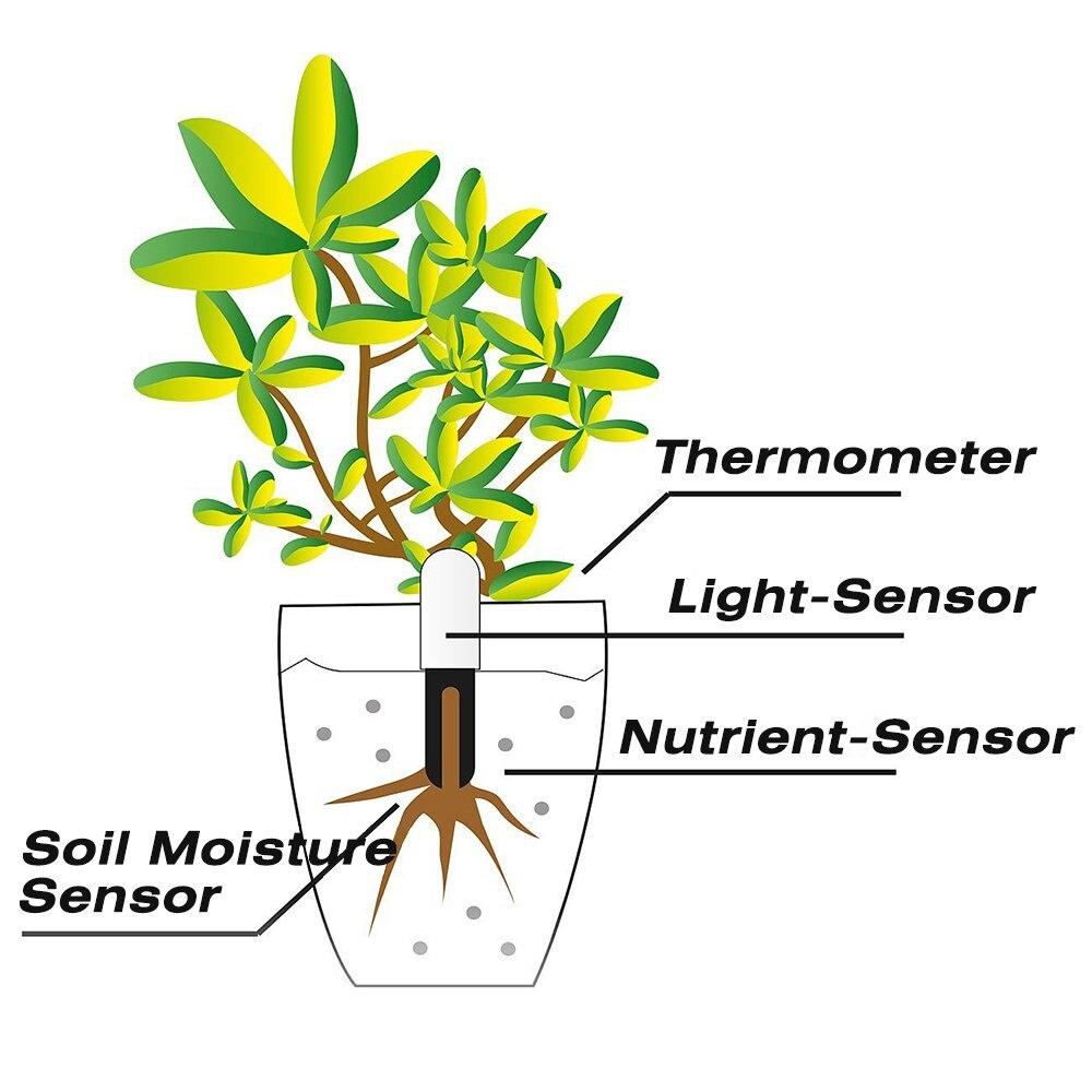 cheapest Original Global Version Youpin HHCC Flower Monitor Plant Grass Soil Water Smart Tester Flora Monitor Sensor Garden Detector HHCC