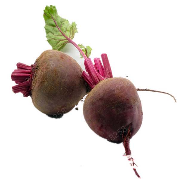 100 Pcs Juicy Beets Outdoor Garden Bonsai Planta Boltardy Beetroot Organic Vegetable Potted Fruit Plant For Flower Pot Planters