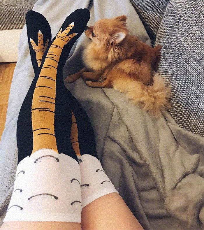 Autumn Winter 3D Funny Women's Chicken Socks Thigh High Sock 3D Cartoon Ainimals Cute Funny Thin Toe Feet Ladies Creative Socks