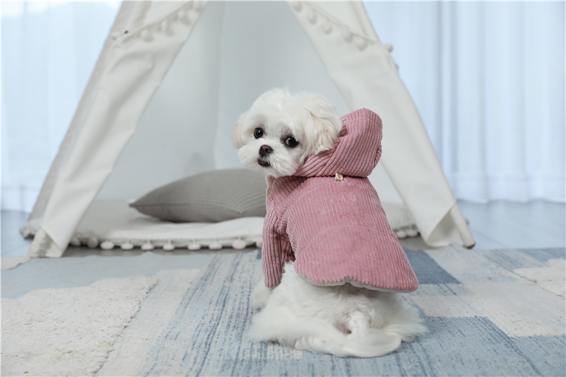 dogs winter apparel thick outfit (8)