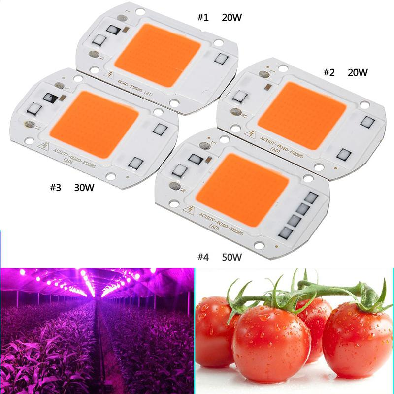 Full Spectrum COB LED Plant Grow Chip Phyto Light 20W 30W 50W Led Diode Grow Lamp Fitolampy For Seedling Veg Indoor Hydroponics