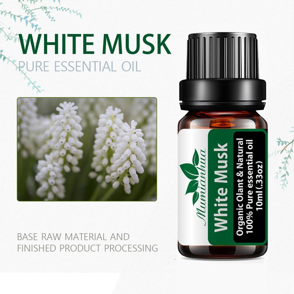Эфирные масла для ароматерапии, диффузор для снятия стресса, массажное эфирное масло для тела, 10 мл|Эфирное масло|   | АлиЭкспресс