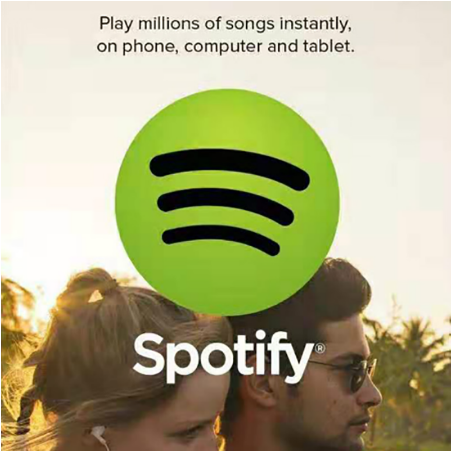 1 12 Month Warranty Spotify Premium No Ads Offline download music works on Works on PCs Smart TVs Set top Boxes cellphone