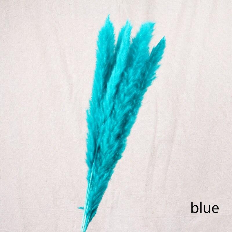 7pcs-blue