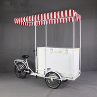 KN T06A SIMPLE FREEZER BIKE New style ice cream bike bicycle cart with freezer and solar panel roof
