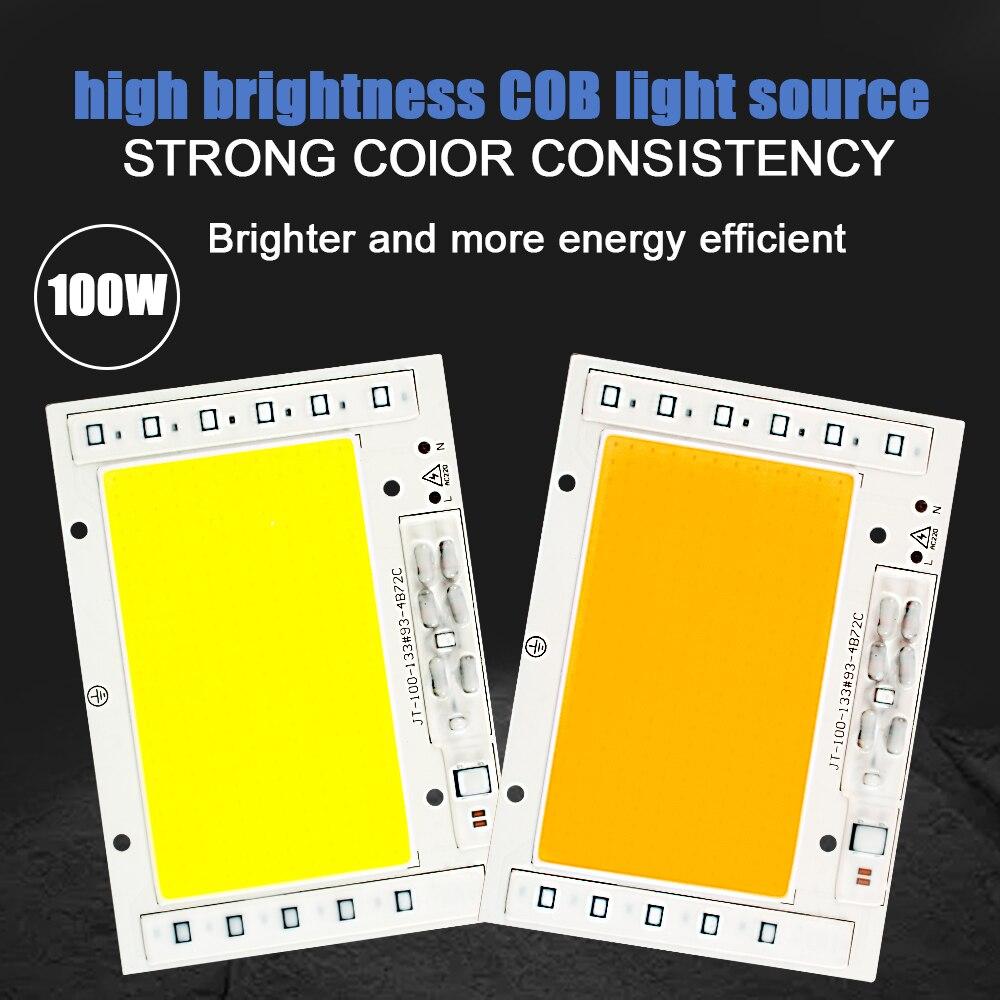 LED COB Chip 15W 20W 30W 50W 100W 220V Smart IC No Need Driver LED Bulb Lamp For Flood Light Spotlight Diy Lighting