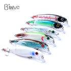Biwvo 9g fishing lur...