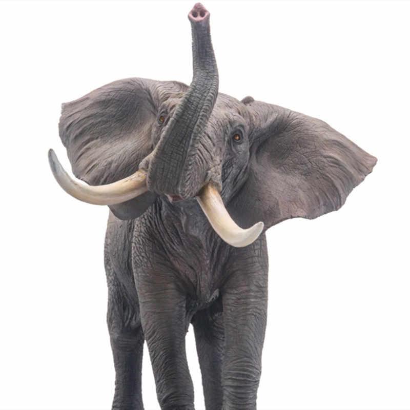 находится как размеры слона картинки стал предметом для