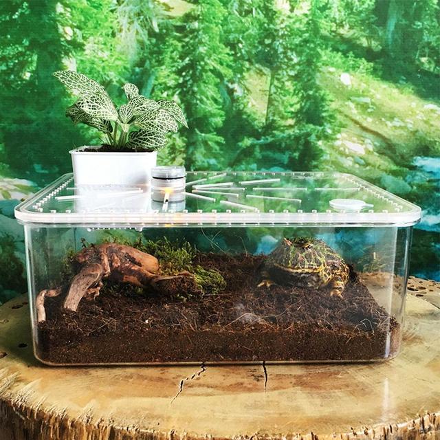 Reptile Breeding Box - Safe - Breathable Acrylic Feeding Tank For Breeding Spiders - Geckos - Frogs - Small Snakes 29cm*22cm*12cm 4