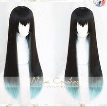 Dämon Slayer Tokitou Muichirou Cos Perücke 80cm Lange Wärme Beständig Haar Cosplay Kostüm Perücken + Freie Wig Cap