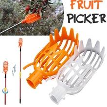 Fruit Picked Courtyard Garden…