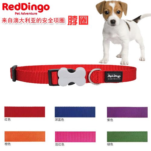Gold Orchid Dog Reddingo Dog Bo Dai Adjustable Dog Collar Multi-color Selectable Dog Collar [Inquiry]