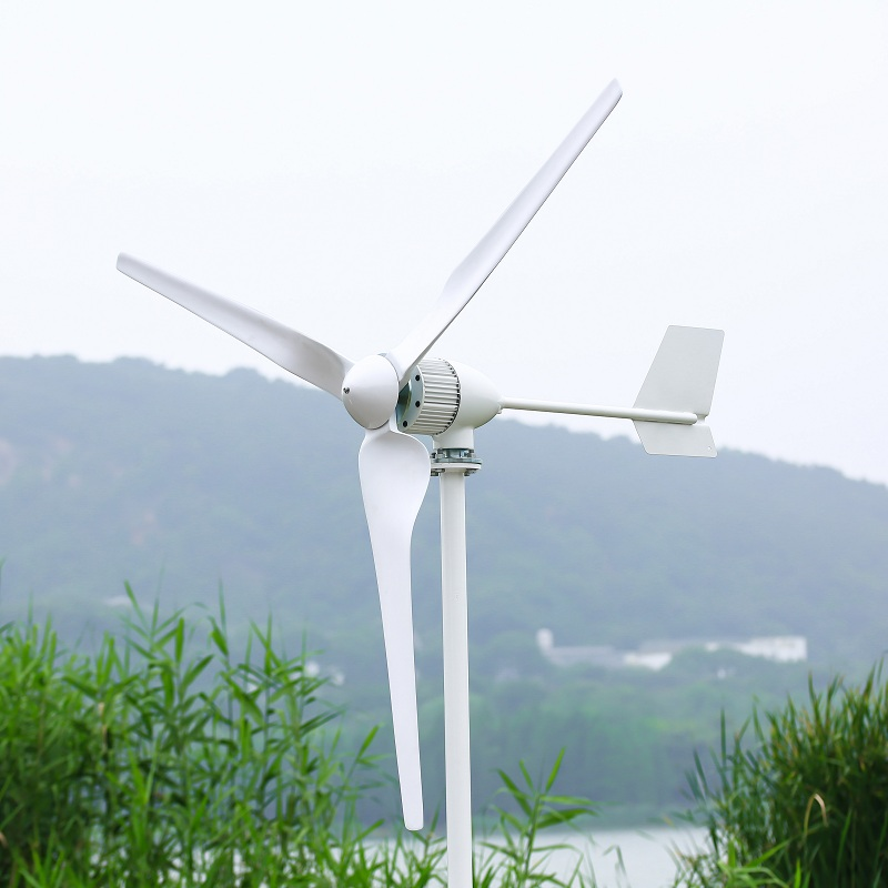 1000W Horizontal Wind Turbine Power Generator 24V/48V 3/5 Blades Start up Speed 2m/s Fit For Street Lamps