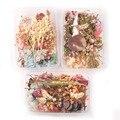 1 коробка, разноцветные рандомные сухие растения для рукоделия, прессованные цветы, «сделай сам», аксессуары для украшений, домашний декор ...