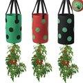 13 Hole Strawberry Planting Bags Vertical Garden Pots Felt Fabric Grow Pot Hanging Garden Grow Bags with Visualization Pockets