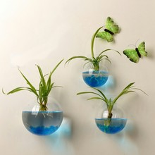 Vase Aquarium-Container-Decor Garden-Supplies Glass-Ball Flower Hanging-Plant Terrarium-Wall