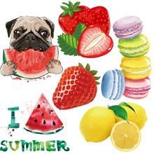 Remendos de frutas dos desenhos animados na roupa ferro em transferências para a roupa melancia applique animal cão adesivos listras na camiseta decro