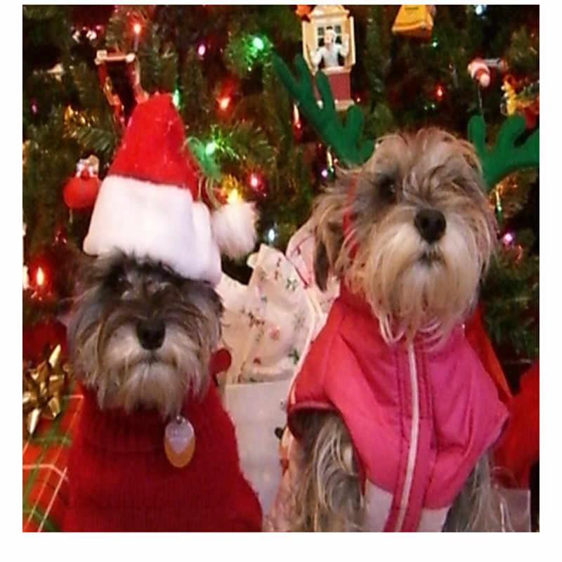 Nón bé cho Chó Mèo Giữ Ấm Mùa Đông Sang Trọng Giáng Sinh Nón Chúc Mừng Giáng Sinh Năm Mới Nắp Trang Trí Trang Trí Nhà nguồn cung cấp