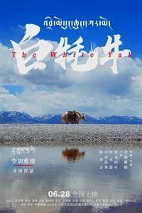 中国宴[更新至2集]