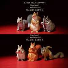 Mr z животных модель no44: 1/6th squirrell (набор a/b) рисунок