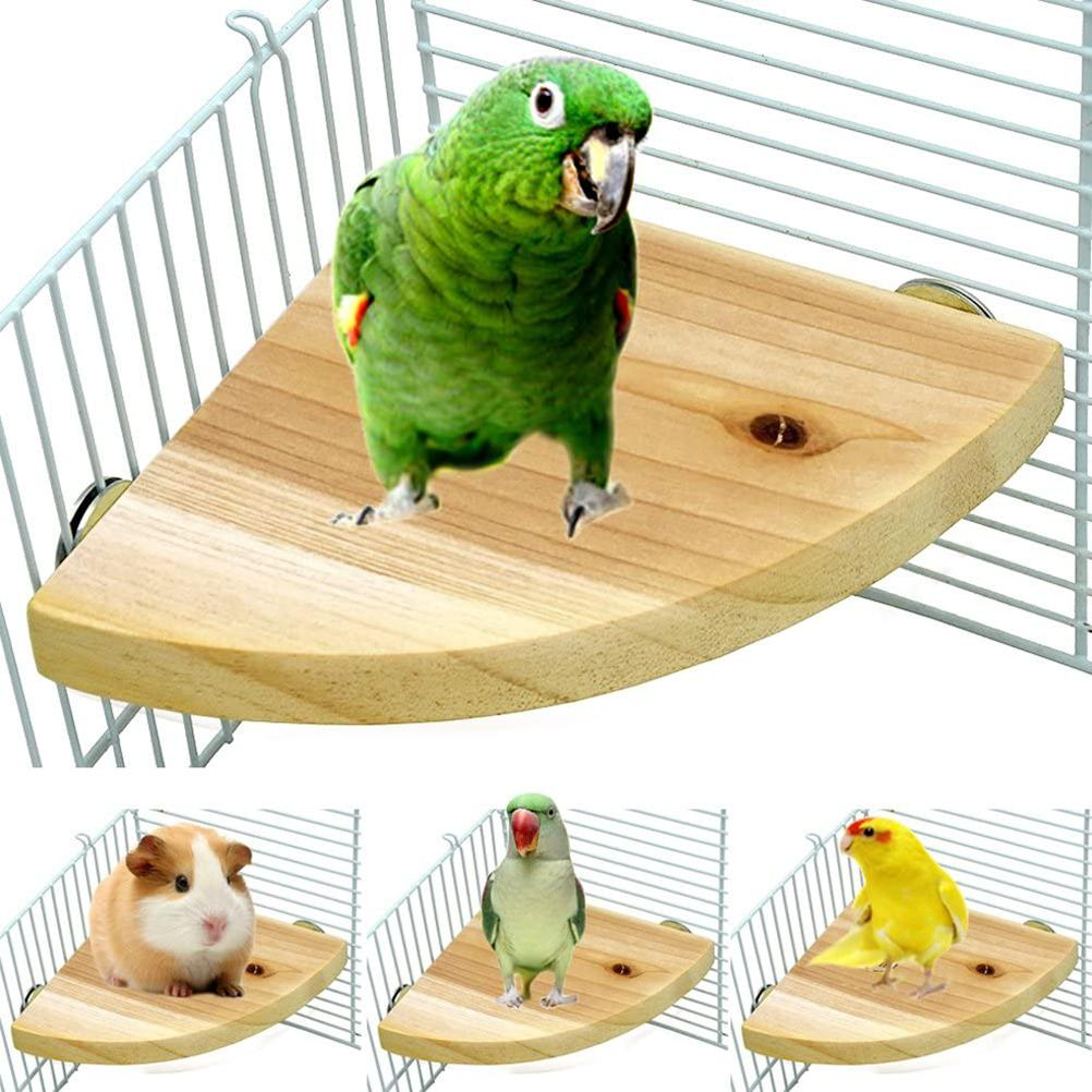Wooden Bird Parrot Stand Birdcage Pet Accessories for Small Animals Rat Hamster Lovebird Finches Conure Budgie Exercise Toy