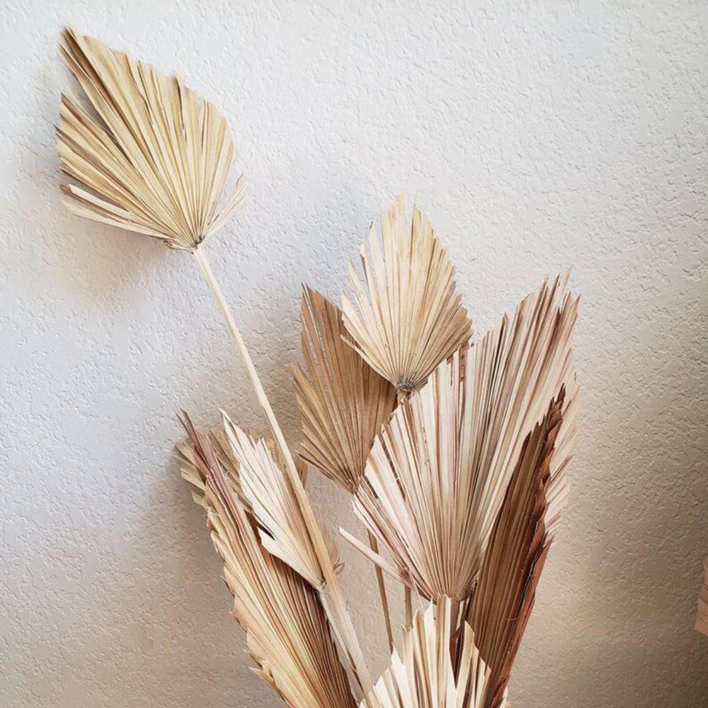 DRIED PALM FAN LEAF ARTIFICIAL DRY NATURAL LOOK PALMS LATEX FLOWERS DECORATIONS