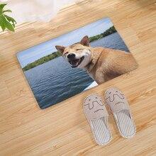 1pcs 40*60cm Cute Dog Pattern Floor Mat Anti-Slip Suede Carpet Doormat indoor Kitchen Bathroom Living Room Door Mat Rug symmetrical pattern door mat